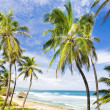 Bathsheba, Eastern coast of Barbados, Caribbean — Stock Photo