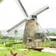 Morgan Lewis Mill, Barbados — Stock Photo