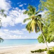 Enterprise Beach, Barbados, Caribbean — Stock Photo