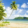 Stock Photo: Batteaux Bay, Tobago