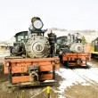 Stem locomotives in Colorado Railroad Museum, USA - Stock Photo