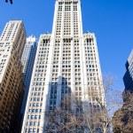 Woolworth building, Manhattan, New York City, USA — Stock Photo