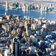 View of Manhattan from The Empire State Building, New York City, — Stock Photo #11289708