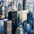 View of Manhattan from The Empire State Building, New York City, — Stock Photo #11289711