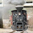 Stock Photo: Steam locomotive, CiernohronskRailway, Slovakia