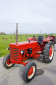 Tractor, Noord Holland, Netherlands — Stock Photo