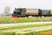 Steam train, Hoorn - Medemblik, Noord Holland, Netherlands — Stock Photo