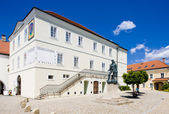 Former town hall (now museum), Nove Mesto nad Metuji, Czech Repu — Stock Photo