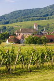 Orschwihr, Alsace, France — Stock Photo
