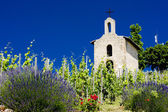 Grand cru vineyard and Chapel of St. Christopher, L'Hermitage, Rhone-Alpes, France — Stock Photo