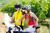 Bikers holding a map in vineyard, Czech Republic — Stock Photo