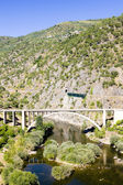 Railway and road viaducts in Douro Valley, Portugal — Stock Photo