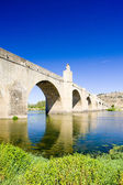 Bridge in Medellin, Badajoz Province, Extremadura, Spain — Stock Photo