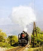 Train with steam locomotive near Handlova, Slovakia — Stock Photo