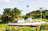 Fishing boats, Skeete's Bay, Barbados — Stock Photo