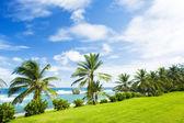 Bathsheba, East coast of Barbados, Caribbean — Stockfoto