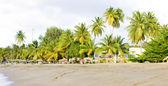 Turtle Beach, Tobago — Stock Photo