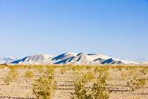 Dumont Dunes, California, USA — Stock Photo