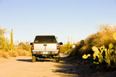 Off road, Saguaro National Park, Arizona, USA — Stock Photo
