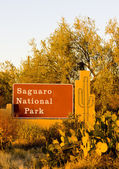 Entrance, Saguaro National Park, Arizona, USA — Stock Photo