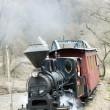 Steam train, Ciernohronska Railway, Slovakia — Stock Photo #11290007