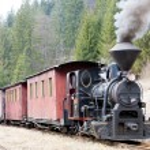 Steam train, Ciernohronska Railway, Slovakia — Stock Photo #11290009