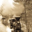 Steam train, Ciernohronska Railway, Slovakia — Stock Photo