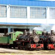 Steam locomotives in depot, Kostolac, Serbia - Foto de Stock