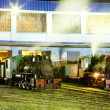 Royalty-Free Stock Photo: Steam locomotives in depot at night, Kostolac, Serbia