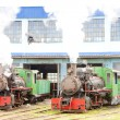 Stock Photo: Steam locomotives in depot, Kostolac, Serbia