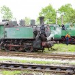 Steam locomotives, Kolubara, Serbia — Stock Photo