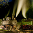 Steam locomotives at night, Oskova, Bosnia and Hercegovina — Stock Photo #11290462