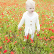 Little girl on summer meadow in blossom — Stock Photo