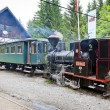 Steam locomotives, Museum of Kysuce village, Vychylovka, Slovaki — Stock Photo