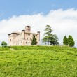 Grinzane Cavour Castle with vineyard, Piedmont, Italy — Stockfoto