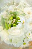 Still life - white flower (sample of wine aroma) — Stock Photo