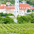 Durnstein, vineyard in Wachau Region, Lower Austria, Austria — Stock Photo #11423258