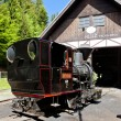 Steam locomotive, Museum of Kysuce village, Vychylovka, Slovakia — Stock Photo
