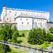 Zvolen Castle, Slovakia — Stock Photo #11423554