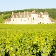 Stock Photo: Clos Blanc De Vougeot Castle, Burgundy, France