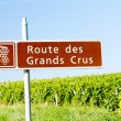 Wine route, Burgundy, France — Stock Photo #11423789