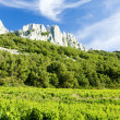 Vineyards near Gigondas at Col Du Cayron, Provence, France — Stock Photo #11423960