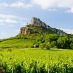 ������, ������: Solutre Rock with vineyards Burgundy France