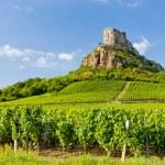 Постер, плакат: Solutre Rock with vineyards Burgundy France