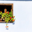 Window with flowers — Stock Photo #11424677