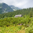Landscape near Popradske Tarn, Vysoke Tatry (High Tatras), Slova — Stock Photo #11424804