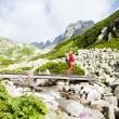 Woman backpacker in Great Cold Valley, Vysoke Tatry (High Tatras - Stock Photo