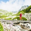 Woman backpacker in Great Cold Valley, Vysoke Tatry (High Tatras — Stock Photo #11424995