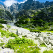 Small Cold Valley, Vysoke Tatry (High Tatras), Slovakia — Stock Photo #11425121