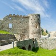 Devin Castle, Slovakia — Stock Photo #11425136